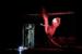 AUFTRAG DANTON Raphael Muff, Evamaria Salcher (c) Lupi Spuma__269c